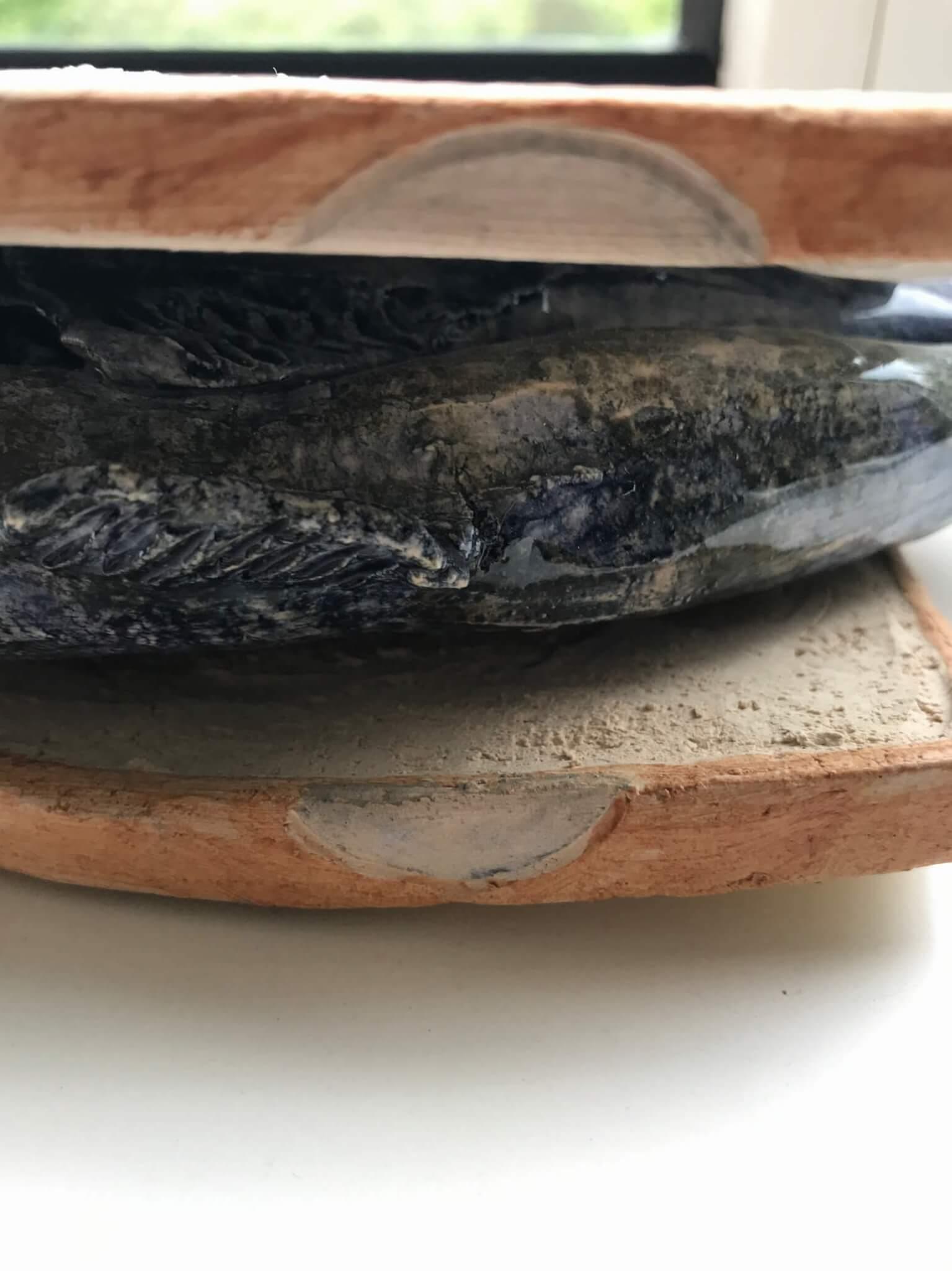 haring op wit brood